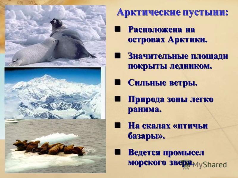 Арктические пустыни: Расположена на островах Арктики. Расположена на островах Арктики. Значительные площади покрыты ледником. Значительные площади покрыты ледником. Сильные ветры. Сильные ветры. Природа зоны легко ранима. Природа зоны легко ранима. Н