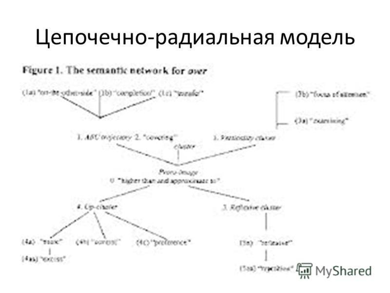 Цепочечно-радиальная модель