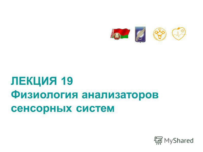 ЛЕКЦИЯ 19 Физиология анализаторов сенсорных систем