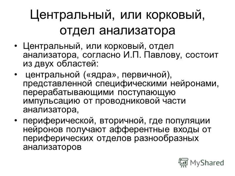 согласно И.П. Павлову,