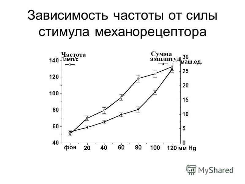 Зависимость частоты от силы стимула механорецептора