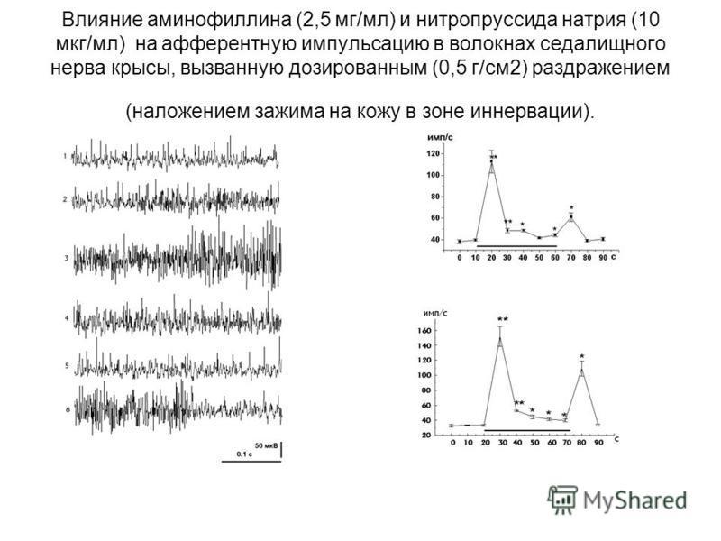 Влияние аминофиллина (2,5 мг/мл) и нитропруссида натрия (10 мкг/мл) на афферентную импульсацию в волокнах седалищного нерва крысы, вызванную дозированным (0,5 г/см 2) раздражением (наложением зажима на кожу в зоне иннервации).