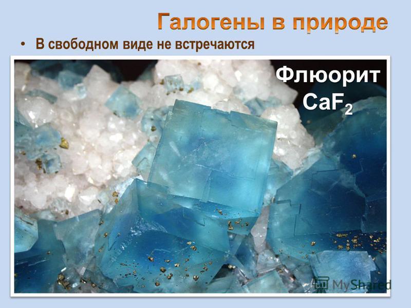 В свободном виде не встречаются Флюорит CaF 2