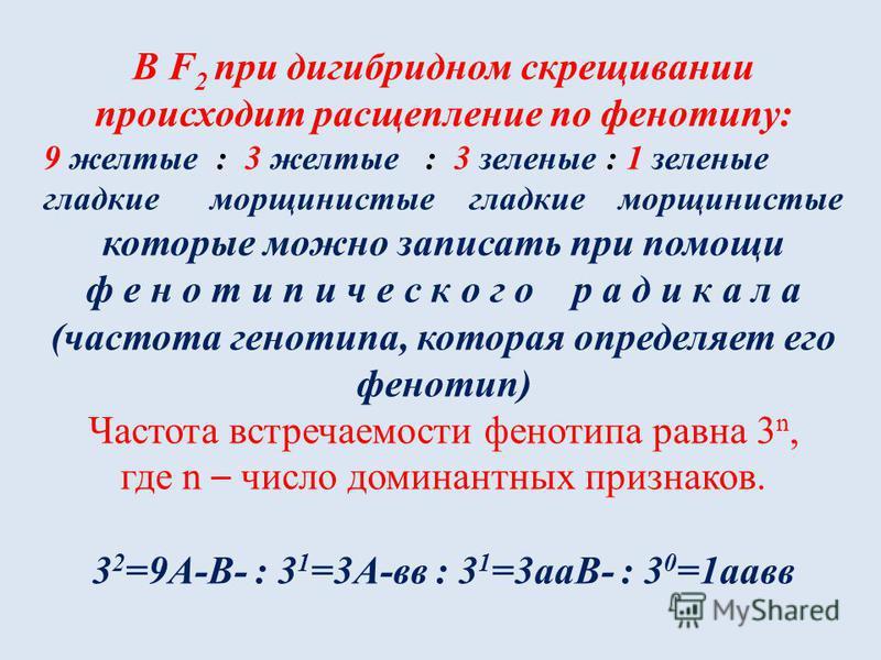 В F 2 при дигибридном скрещивании происходит расщепление по фенотипу: 9 желтые : 3 желтые : 3 зеленые : 1 зеленые гладкие морщинистые которые можно записать при помощи ф е н о т и п и ч е с к о г о р а д и к а л а (частота генотипа, которая определяе