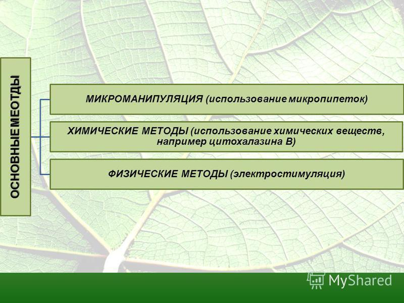 ОСНОВНЫЕ МЕОТДЫ МИКРОМАНИПУЛЯЦИЯ (использование микропипеток) ХИМИЧЕСКИЕ МЕТОДЫ (использование химических веществ, например цитохалазина В) ФИЗИЧЕСКИЕ МЕТОДЫ (электростимуляция)