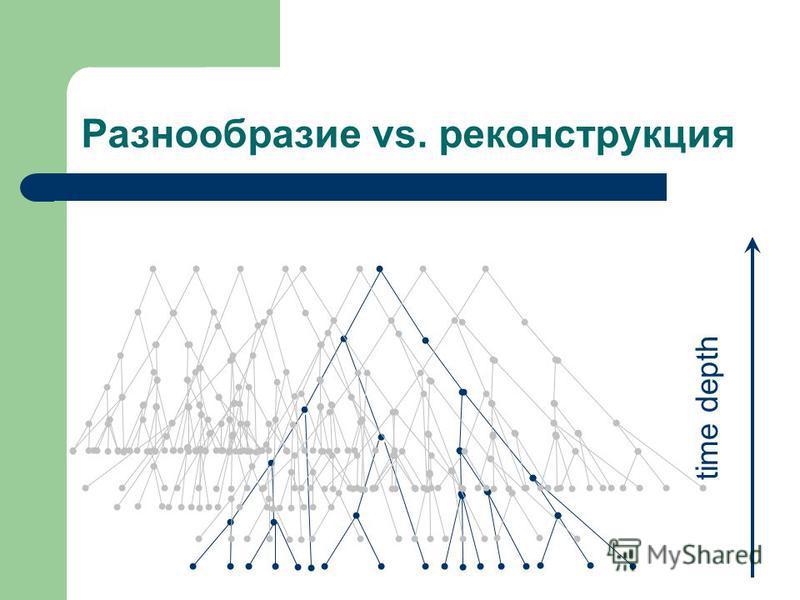 Разнообразие vs. реконструкция time depth