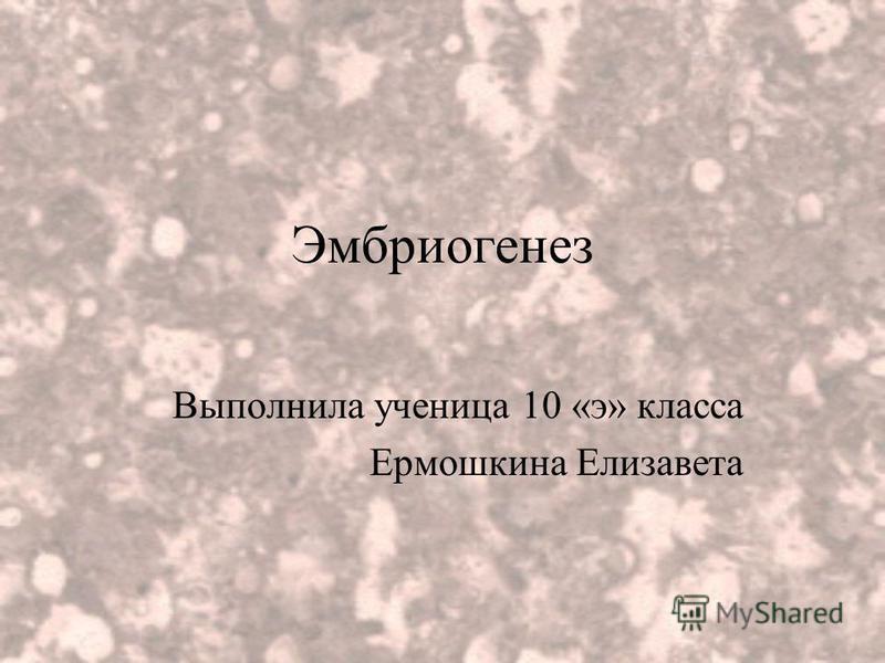 Эмбриогенез Выполнила ученица 10 «э» класса Ермошкина Елизавета