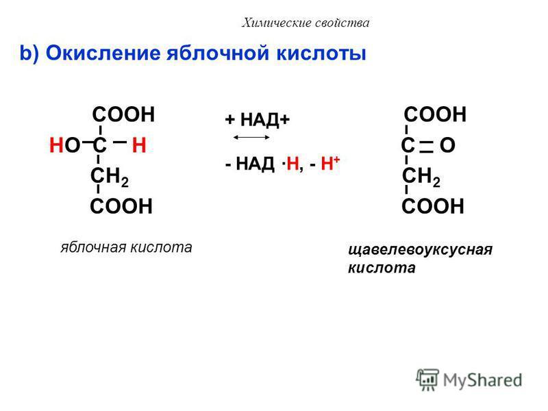 Химические свойства VII. Реакции окисления гидроксикислот a) Окисление молочной кислоты COOH COOH HO C H C O CH 3 CH 3 молочная кислота + НАД + - НАД · H, - H + пировиноградная кислота