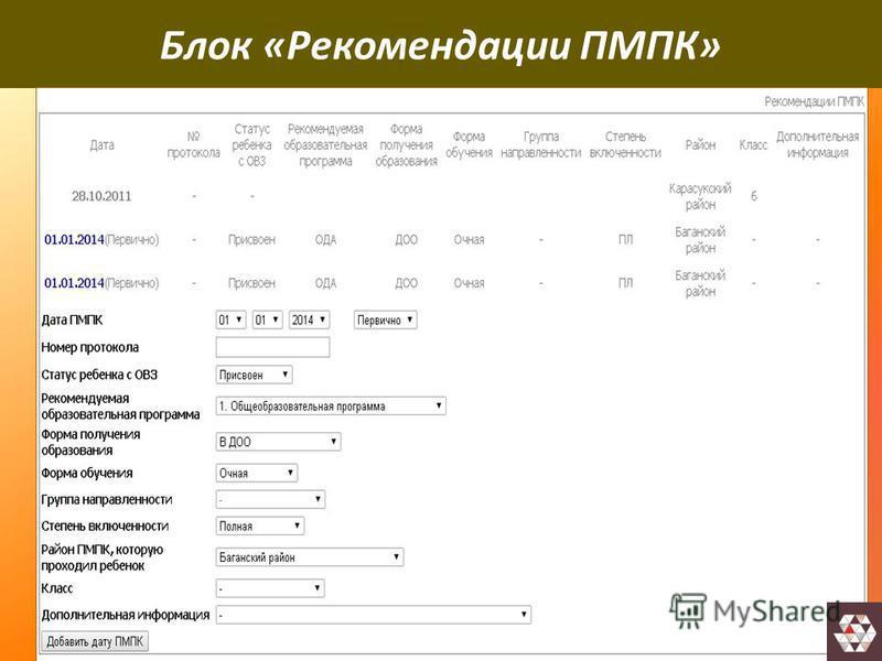 Блок «Рекомендации ПМПК»