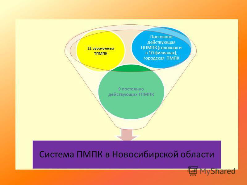 Система ПМПК в Новосибирской области 9 постоянно действующих ТПМПК 22 сессионных ТПМПК Постоянно действующая ЦПМПК (головная и в 10 филиалах), городская ПМПК