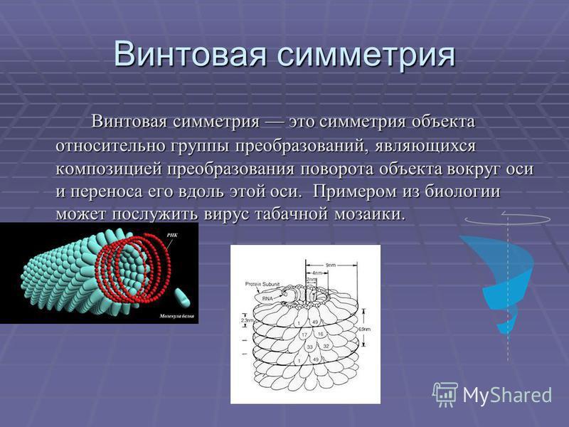 Винтовая симетри я Винтовая симетри я это симетри я объекта относительно группы преобразований, являющихся композицией преобразования поворота объекта вокруг оси и переноса его вдоль этой оси. Примером из биологии может послужить вирус табачной мозаи