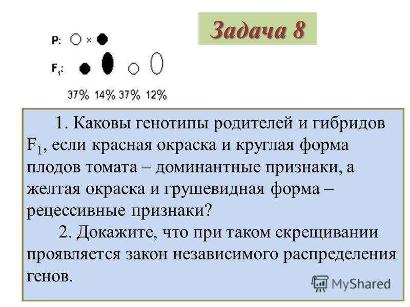 Ответ Решение: 1. Р: Aа х Aа пестрые пестрые гаметы: (А) (а) (А) (а) F 1 : генотип 1АА : 2Аа : 1 а фенотип черные пестрые белые 2. Для того, чтобы получить только пестрых цыплят необходимо брать родителей потомков чистых линий АА и а