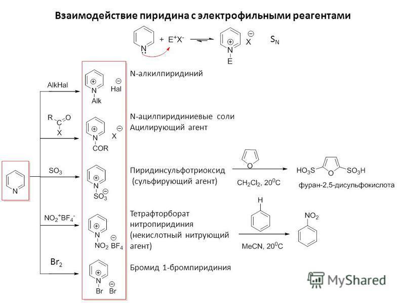 Взаимодействие пиридина с электрофильными реагентами N-алкилпиридиний N-ацилпиридиниевые соли Ацилирующий агент Пиридинсульфотриоксид (сульфирующий агент) Тетрафторборат нитропиридиния (некислотный нитрующий агент) Бромид 1-бромпиридиния SNSN Br 2