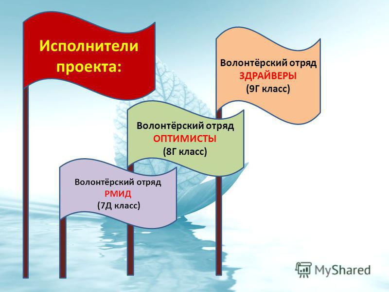 Исполнители проекта: Волонтёрский отряд РМИД (7Д класс) Волонтёрский отряд ОПТИМИСТЫ (8Г класс) Волонтёрский отряд ЗДРАЙВЕРЫ (9Г класс)