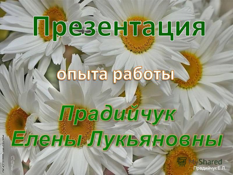 Прадийчук Е.Л.