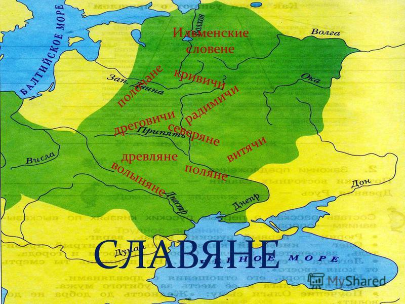 поляне дреговичи древляне кривичи вятичи волыняне северяне полочане радимичи Ильменские словене СЛАВЯНЕ