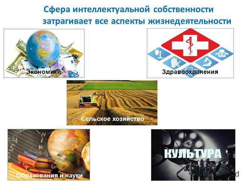 Сфера интеллектуальной собственности затрагивает все аспекты жизнедеятельности 3 Экономики Здравоохранения Образования и науки Сельское хозяйство