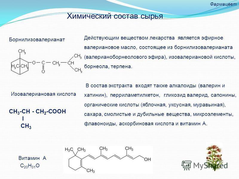 Действующим веществом лекарства является эфирное валериановое масло, состоящее из борнилизовалерианата (валерианоборнеолового эфира), изовалериановой кислоты, борнеола, терпена. В состав экстракта входят также алкалоиды (валерин и хатинин), перриламе