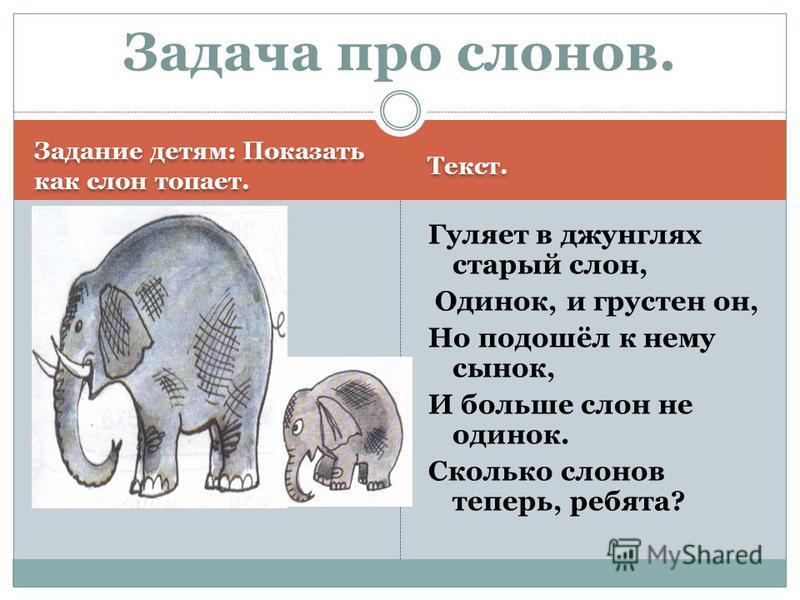 Задание детям: Показать как слон топает. Текст. Гуляет в джунглях старый слон, Одинок, и грустен он, Но подошёл к нему сынок, И больше слон не одинок. Сколько слонов теперь, ребята? Задача про слонов.