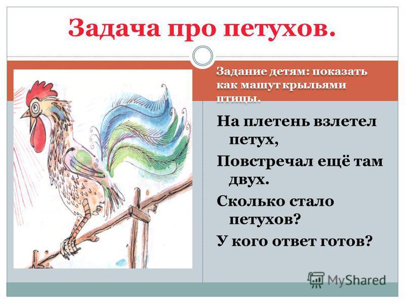 Задание детям: показать как машут крыльями птицы. На плетень взлетел петух, Повстречал ещё там двух. Сколько стало петухов? У кого ответ готов? Задача про петухов.