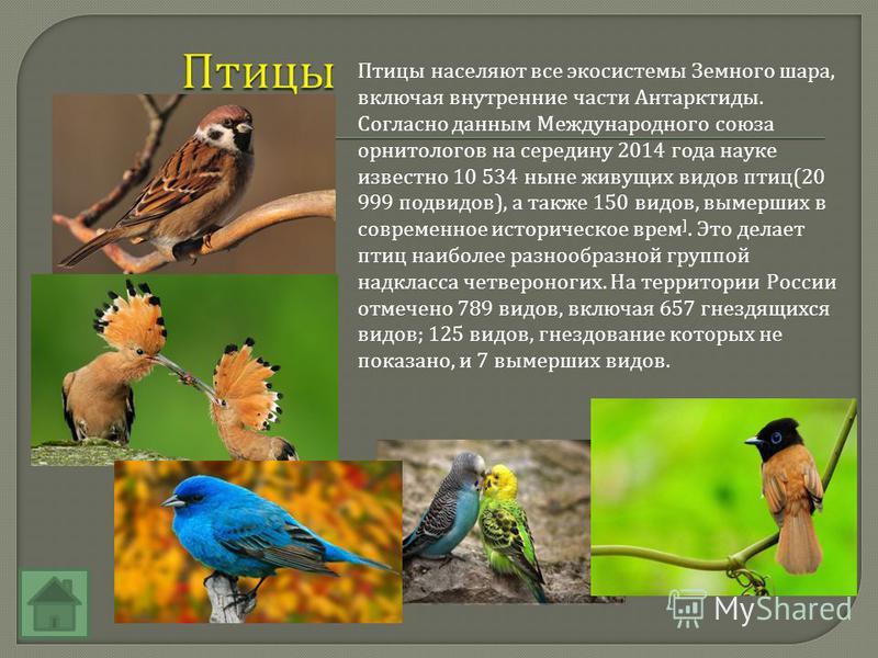 Птицы населяют все экосистемы Земного шара, включая внутренние части Антарктиды. Согласно данным Международного союза орнитологов на середину 2014 года науке известно 10 534 ныне живущих выдов птиц (20 999 подвыдов ), а также 150 выдов, вымерших в со