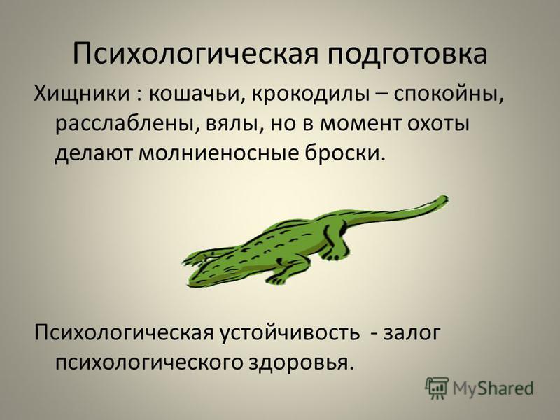 Психологическая подготовка Хищники : кошачьи, крокодилы – спокойны, расслаблены, вялы, но в момент охоты делают молниеносные броски. Психологическая устойчивость - залог психологического здоровья.