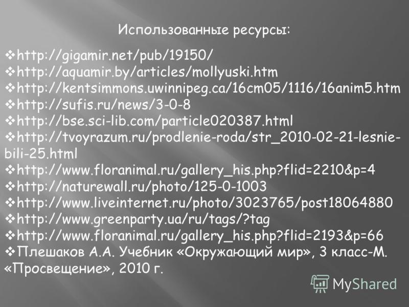 Использованные ресурсы: http://gigamir.net/pub/19150/ http://aquamir.by/articles/mollyuski.htm http://kentsimmons.uwinnipeg.ca/16cm05/1116/16anim5. htm http://sufis.ru/news/3-0-8 http://bse.sci-lib.com/particle020387. html http://tvoyrazum.ru/prodlen