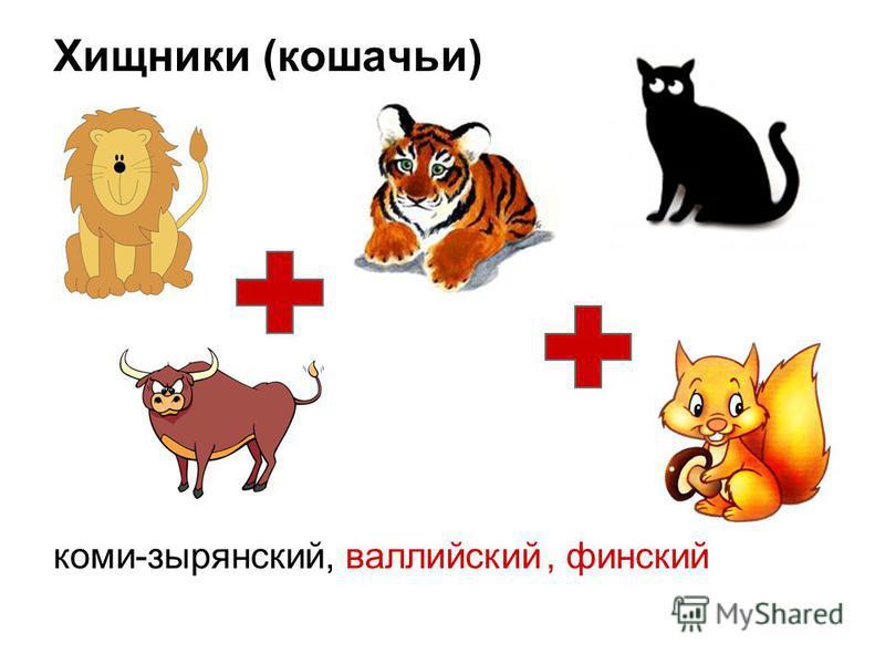 Хищники (кошачьи) коми-зырянский, финский, валлийский