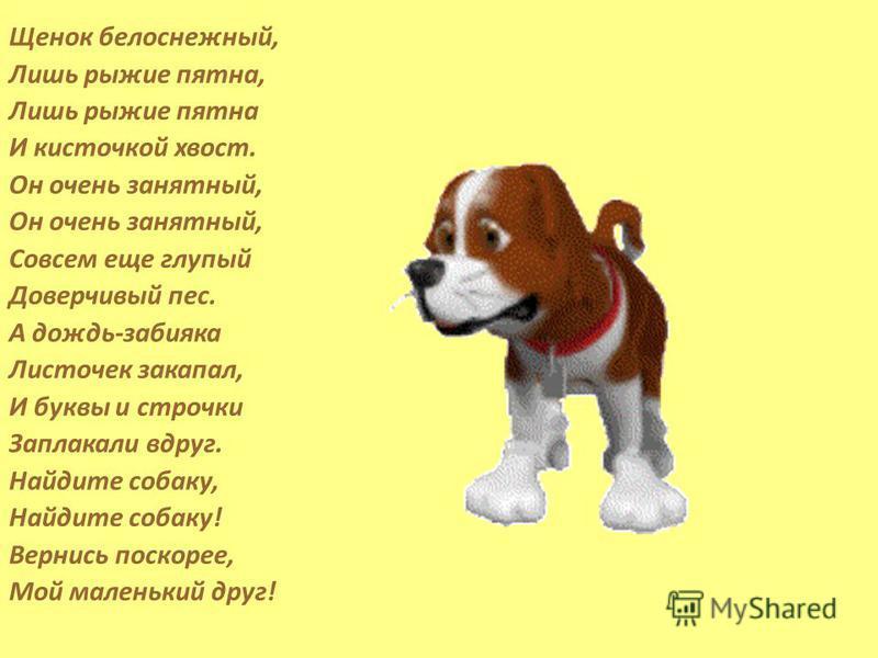 Щенок белоснежный, Лишь рыжие пятна, Лишь рыжие пятна И кисточкой хвост. Он очень занятный, Совсем еще глупый Доверчивый пес. А дождь-забияка Листочек закапал, И буквы и строчки Заплакали вдруг. Найдите собаку, Найдите собаку! Вернись поскорее, Мой м