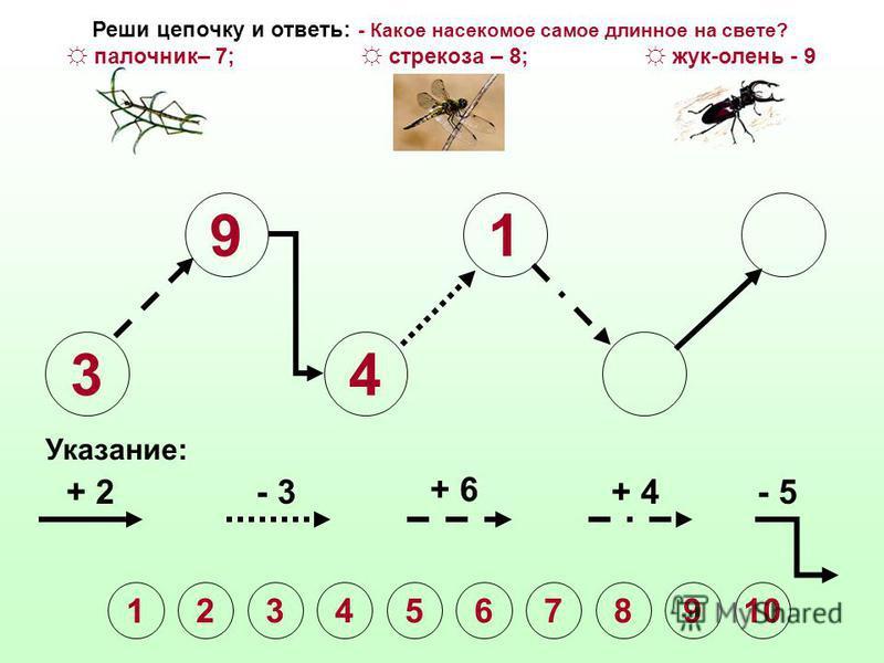 3 9 4 Указание: + 2- 3 + 6 + 4- 5 1 2345678910 Реши цепочку и ответь: - Какое насекомое самое длинное на свете? палочник– 7; стрекоза – 8; жук-олень - 9