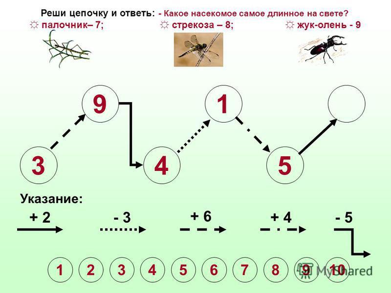 3 9 4 1 Указание: + 2- 3 + 6 + 4- 5 1 2345678910 Реши цепочку и ответь: - Какое насекомое самое длинное на свете? палочник– 7; стрекоза – 8; жук-олень - 9