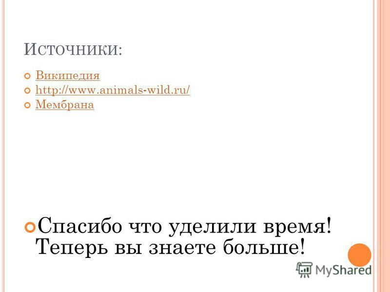 И СТОЧНИКИ : Википедия http://www.animals-wild.ru/ Мембрана Спасибо что уделили время! Теперь вы знаете больше!