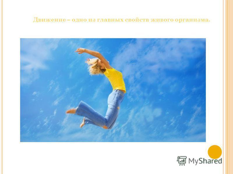 Движение – одно из главных свойств живого организма.
