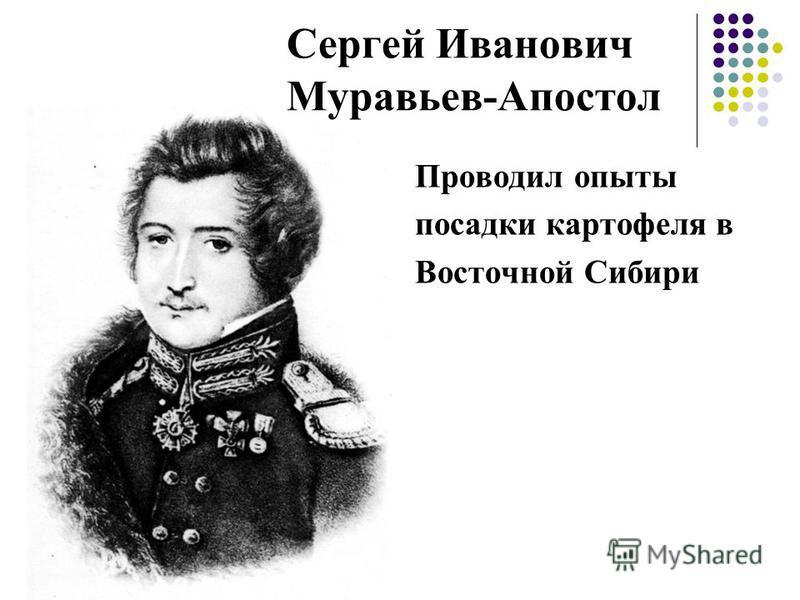 Сергей Иванович Муравьев-Апостол Проводил опыты посадки картофеля в Восточной Сибири