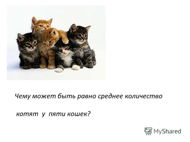 Чему может быть равно среднее количество котят у пяти кошек?