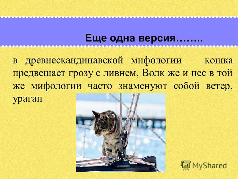 Еще одна версия…….. в древнескандинавской мифологии кошка предвещает грозу с ливнем, Волк же и пес в той же мифологии часто знаменуют собой ветер, ураган