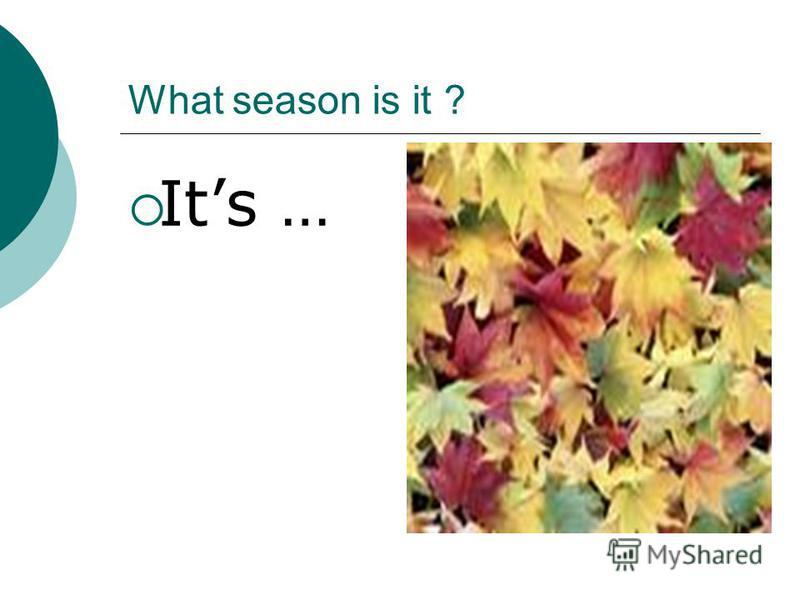 What season is it ? Its …