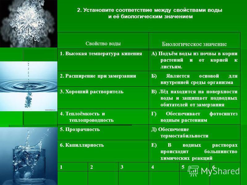 2. Установите соответствие между свойствами воды и её биологическим значением Свойство воды Биологическое значение 1. Высокая температура кипенияА) Подъём воды из почвы в корни растений и от корней к листьям. 2. Расширение при замерзанииБ) Является о
