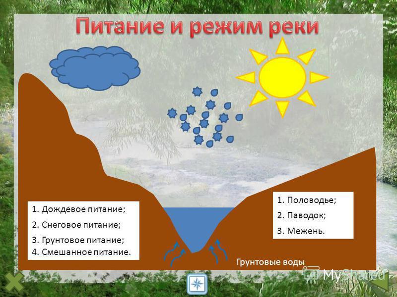 1. Дождевое питание; 2. Снеговое питание; Грунтовые воды 3. Грунтовое питание; 4. Смешанное питание. 1. Половодье; 2. Паводок; 3. Межень.