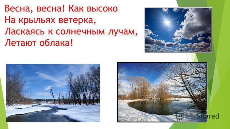 Весна, весна! Как высоко На крыльях ветерка, Ласкаясь к солнечным лучам, Летают облака!