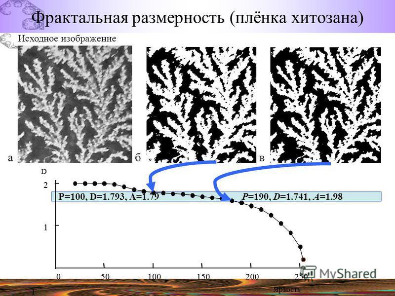 Исходное изображение P=190, D=1.741, A=1.98P=100, D=1.793, A=1.79 Фрактальная размерность (плёнка хитозана)