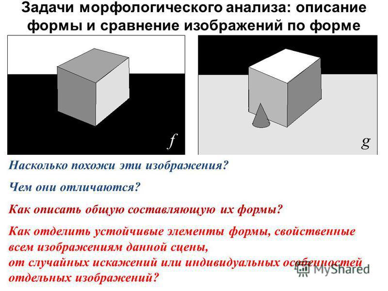 Задачи морфологического анализа : описание формы и сравнение изображений по форме f g Насколько похожи эти изображения? Чем они отличаются? Как описать общую составляющую их формы? Как отделить устойчивые элементы формы, свойственные всем изображения