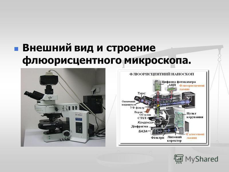 Внешний вид и строение флюоресцентного микроскопа. Внешний вид и строение флюоресцентного микроскопа.