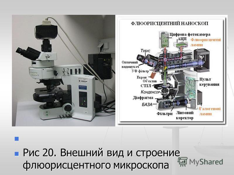 Рис 20. Внешний вид и строение флюоресцентного микроскопа Рис 20. Внешний вид и строение флюоресцентного микроскопа