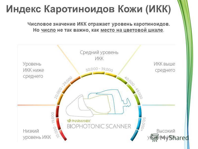 Индекс Каротиноидов Кожи (ИКК) Числовое значение ИКК отражает уровень каротиноидов. Но число не так важно, как место на цветовой шкале.