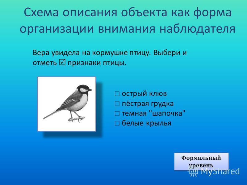 Схема описания объекта как форма организации внимания наблюдателя