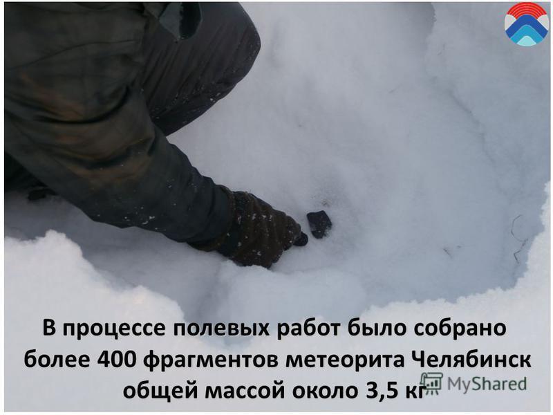 В процессе полевых работ было собрано более 400 фрагментов метеорита Челябинск более 400 фрагментов метеорита Челябинск общей массой около 3,5 кг