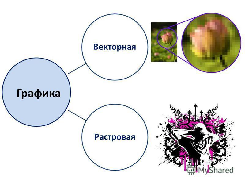 Векторная Растровая Графика