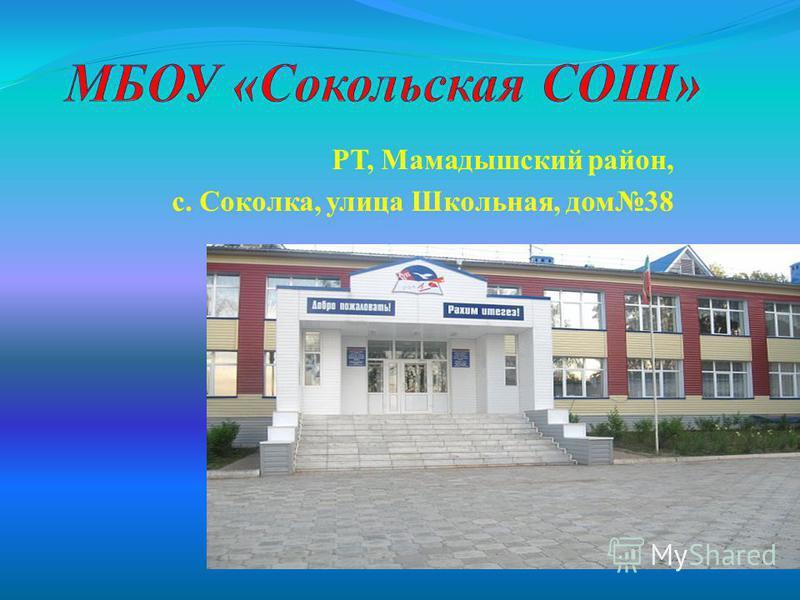 РТ, Мамадышский район, с. Соколка, улица Школьная, дом 38