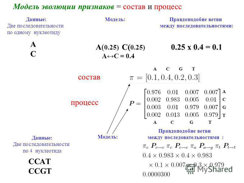 Модель эволюции признаков = состав и процесс Данные: Две последовательности по одному нуклеотиду АCАC Модель: A( 0.25) C( 0.25) AC = 0.4 Правдоподобие ветви между последовательностями: 0.25 x 0.4 = 0.1 состав процесс A C G T ACGTACGT Данные: Две посл